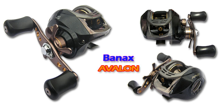 Model = AVALON