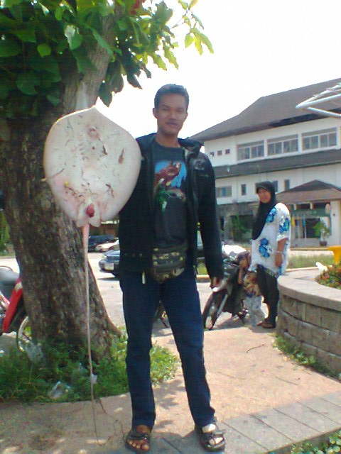 :music: :talk: :love: :cheer: :cheer: :cheer: