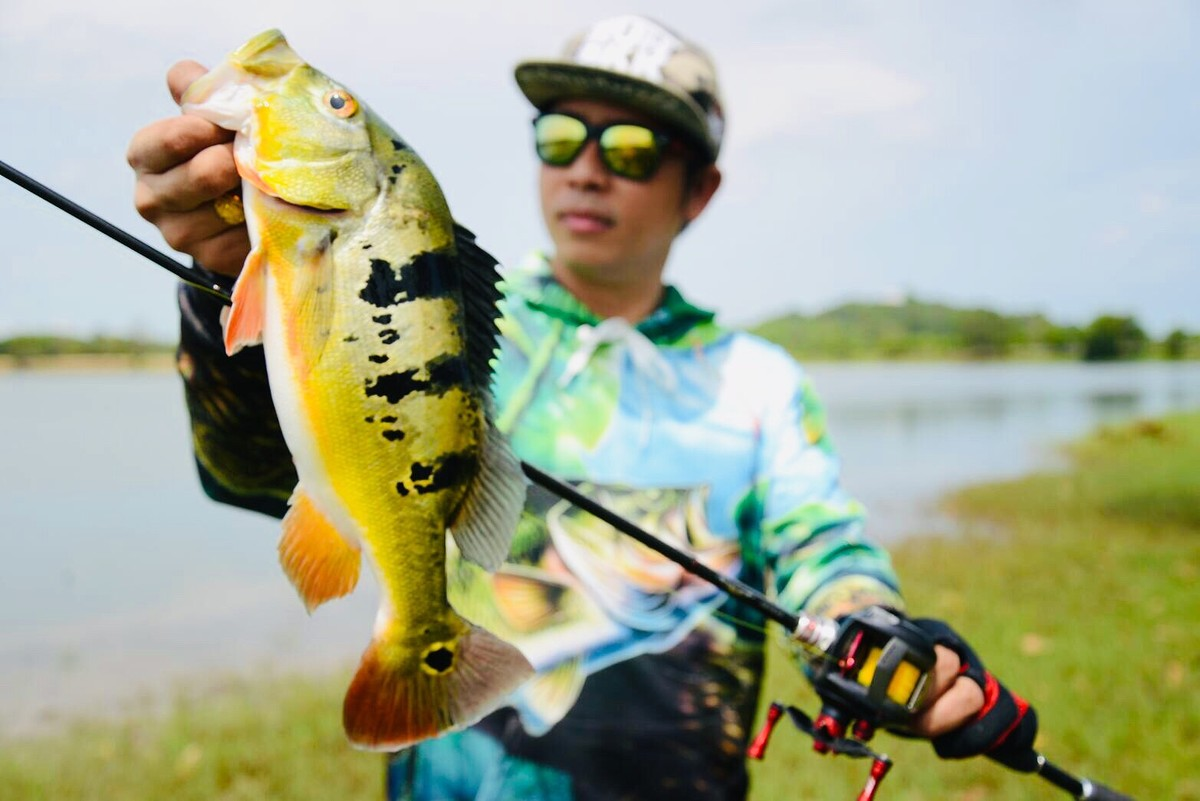 """Peacock bass"" Love Fishing in Thailand"
