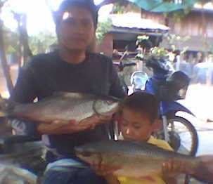 เหยื่อปราบปลาสำหรับหมายที่กินเหยื่อยาก