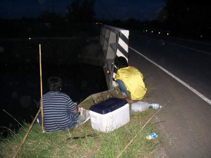 เทคนิคการตกกุ้งแม่น้ำ