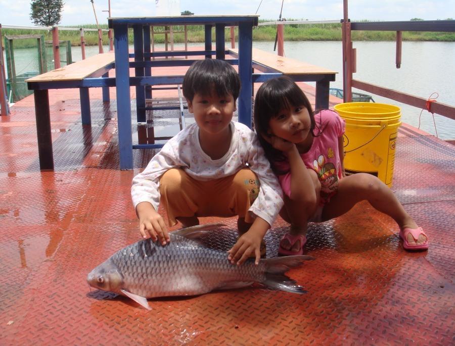 ปลาตะกาก