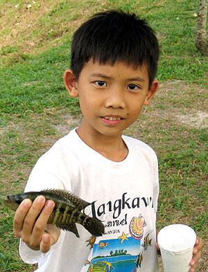 Alien Fish Culling at Subang Jaya Lake by PeMM