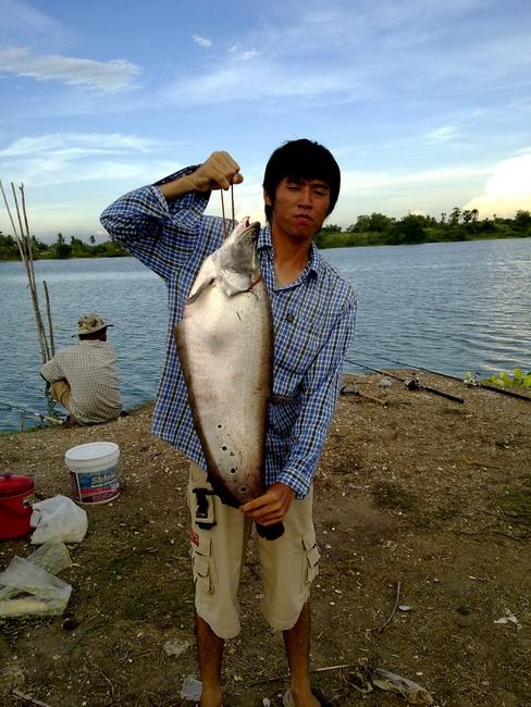 ปลากรายธรรมชาติตัวแรกในชีวิต(ไปซ้ำที่เก่ามา)