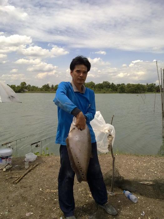 ปลากรายธรรมชาติ(ที่เก่าอีกแล้ว)