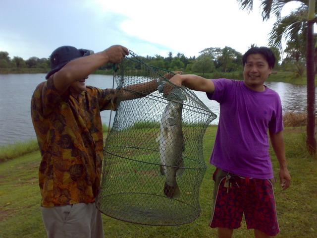 วิธีตกปลา กะพง ครับ