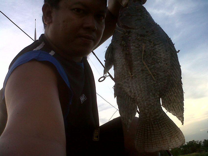 เบื่อหน้าปลาช่อน ^^