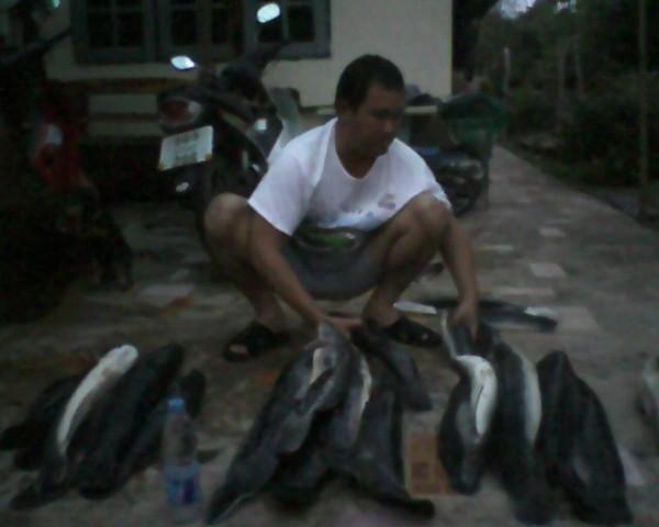 ตกปลาตากฝน