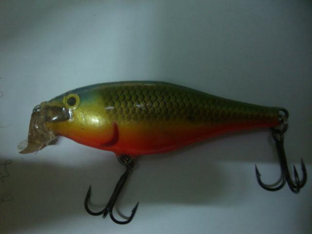 ปลาไม้ทำจากเครื่องรุ่น V.2