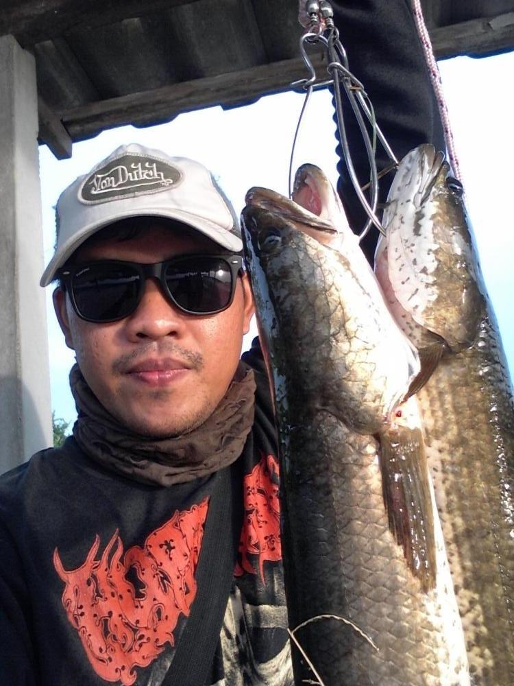 วันว่างๆกับปลายาง 2