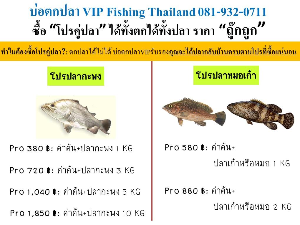 VIP จัดเต็มลงปลาฉลองรับเงินออกทั้งบ่อตกเล่นและบุฟเฟ่ต์