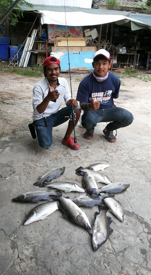 ลงปลาเพิ่ม บ่อบุปผา
