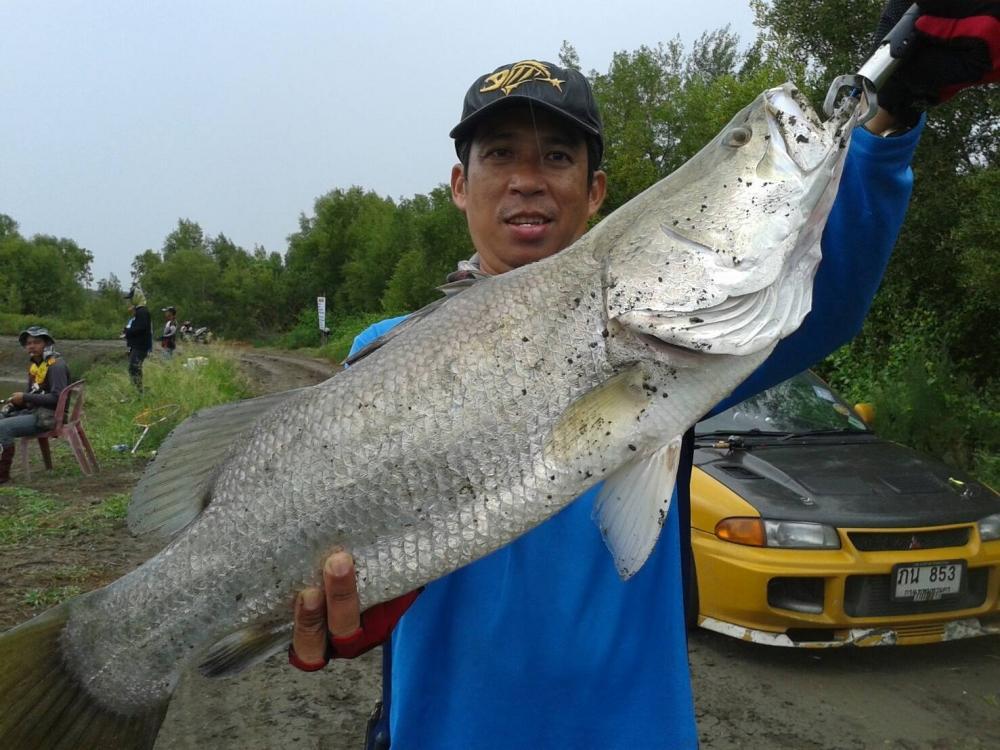 ♡♡♡♡วังกระพงน้าตุ๊.ลงปลาใหม่ เปิดยาวช่วงวันหยุดนี้♡♡♡♡