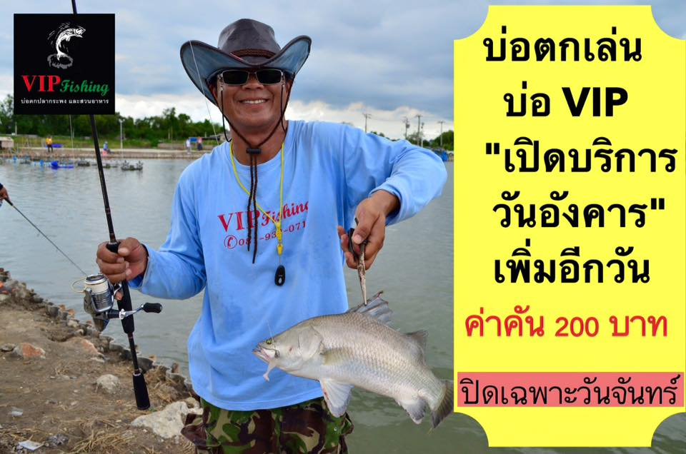 บ่อVIPประกาศเปิดให้ตกปลาวันอังคารเพิ่มอีกวัน ลงปลาเตรียมไว้ให้นะครับ