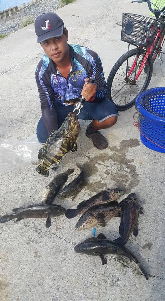 เสริมทัพลงปลาแล้วที่บ่อ VIP