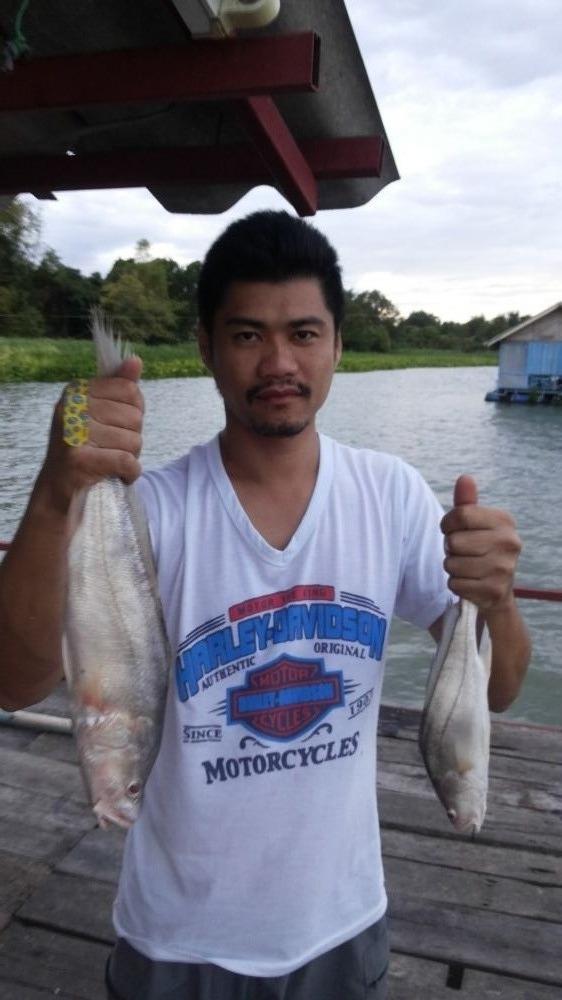 แนะนำสูตรตกปลาแม่น้ำช่วงน้ำแดงหน่อยครับ...ขอบคุณครับ