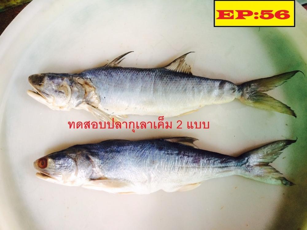 ทดสอบทอดปลากุเลาเค็ม ทั้ง 2 แบบ