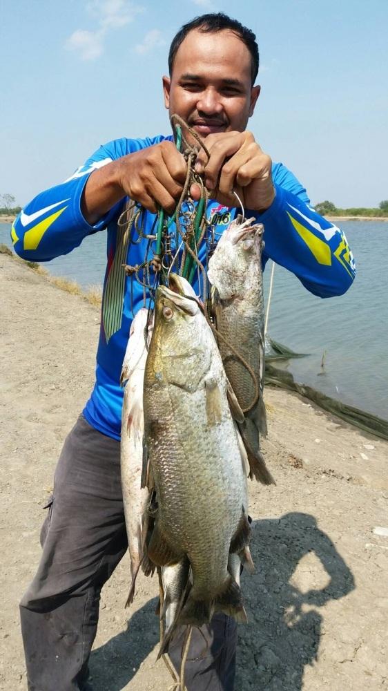 ♡♡รักชอบปลาแปลกๆหายากมาวังกระพงน้าตุ๊น่ะครับ♡♡♡