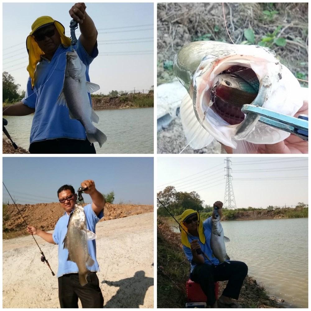 เปิดทริปกระพงวันอาทิตย์ที่ 5 มี.ค.60 ปลาปล่อยหากินธรรมชาติ 2,000ตัว
