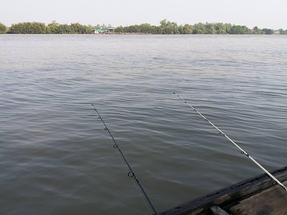 ปลาดุกทะเลกับไต๋สังข์บ้านโพธิ์