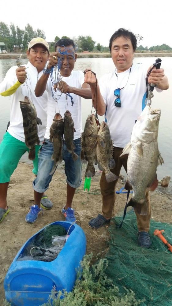 ♡♡วังกระพงน้าตุ๊ ลงปลา.เก๊า เก๋าแล้ว200ตัว.ปลาอ้วนๆมาแล้วคร๊าบ♡♡♡♡♡♡