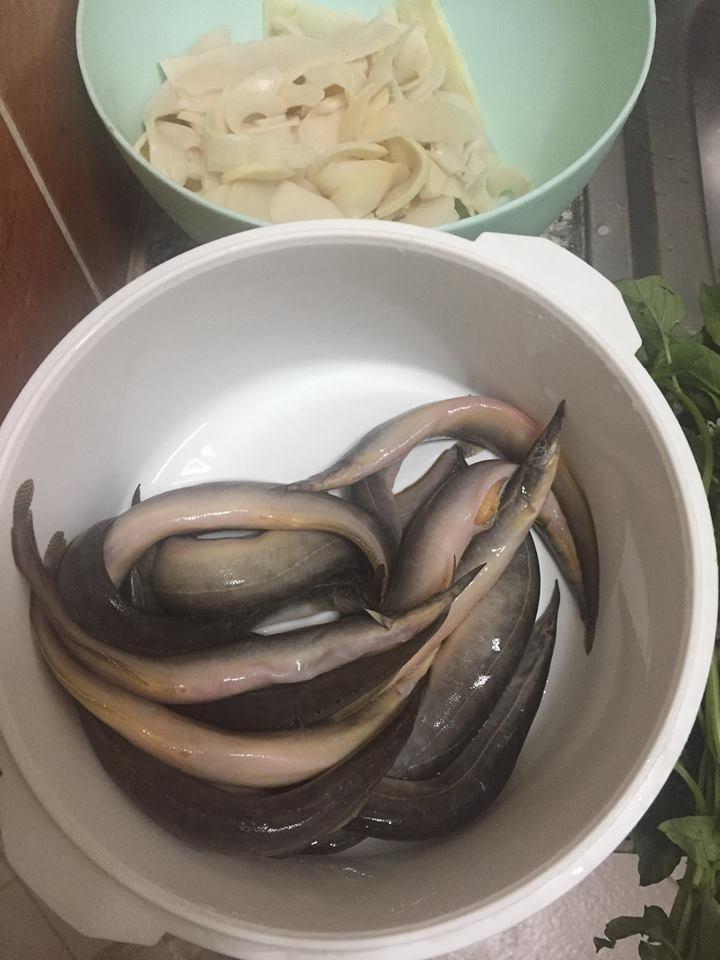 แกงปลาหลดใส่หน่อไม้ดอง