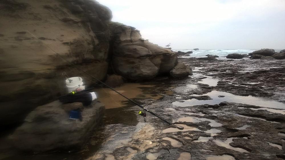 Australia Rock Fishing (Ep1 Australia Salmon)