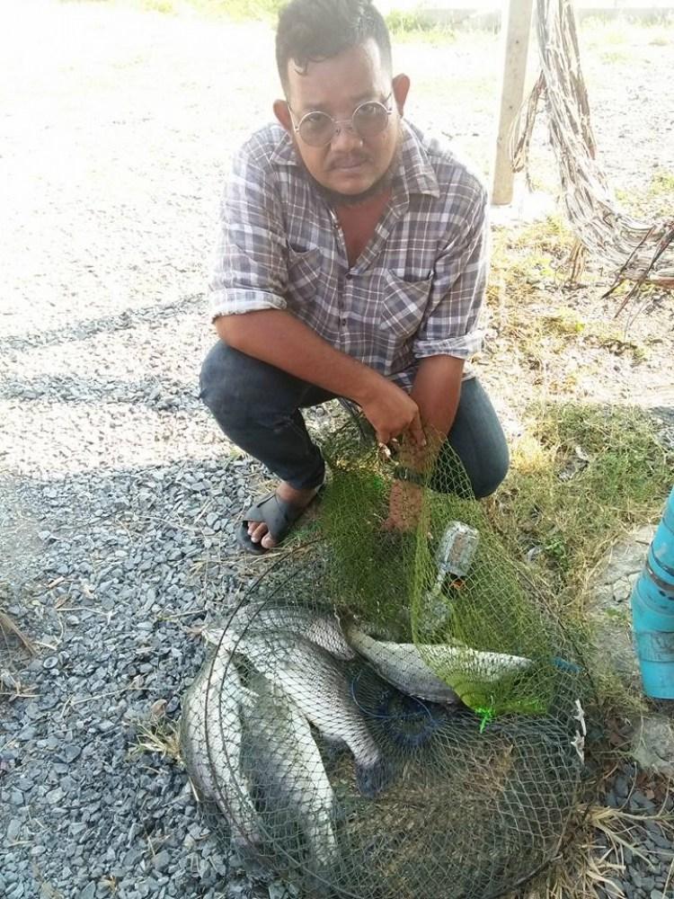 ลงปลาแล้วครับวันนี้กะพงบุฟเฟต์บึงเตย260โลอาทิตย์นี้มามันส์กันนนน