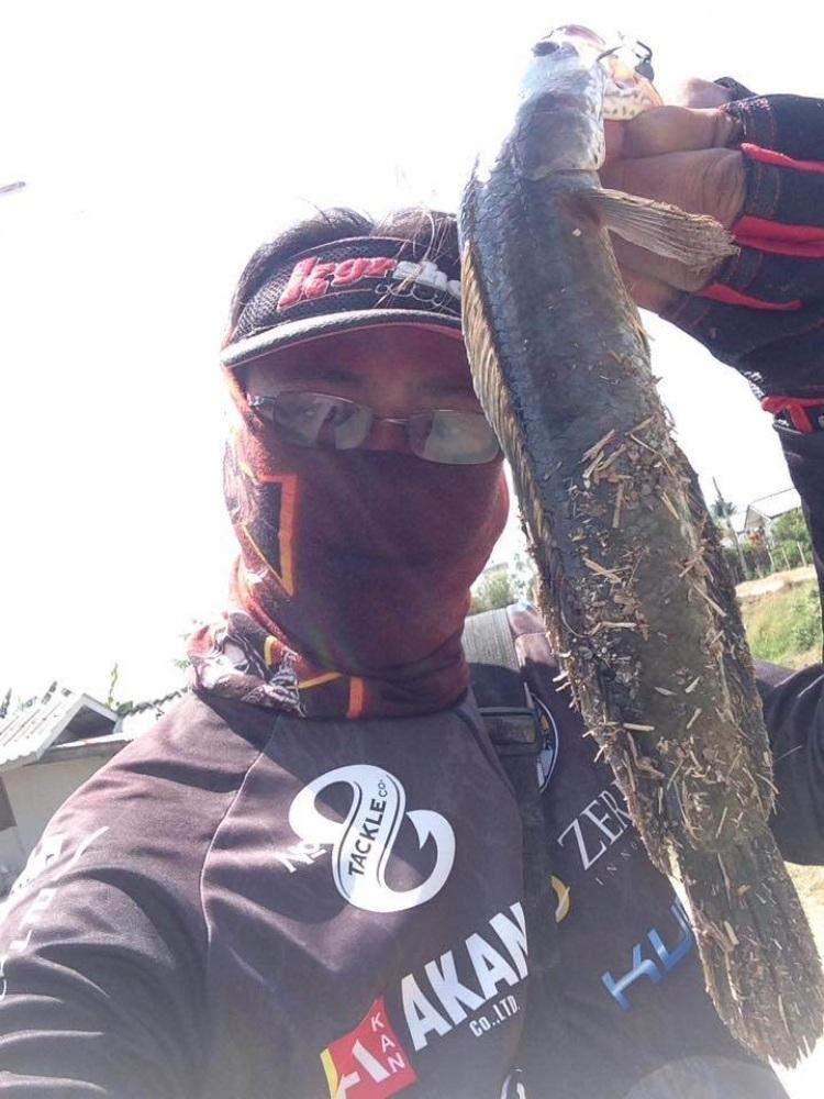 ตัดต่อปลายาง