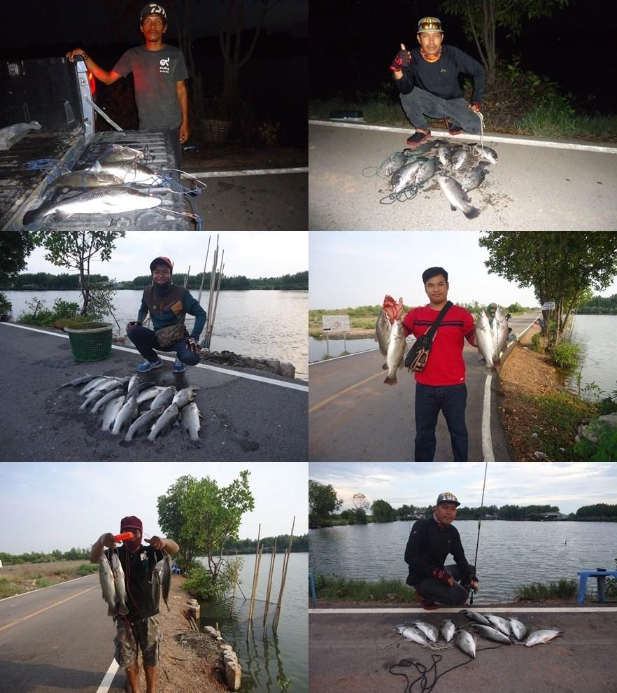ลงปลากระพง บ่อเจ้เพ็ญ