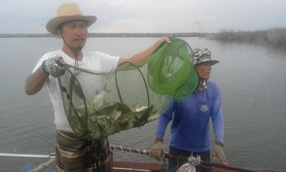 ตกปลาช่อน กระสูบ ตกหน้าดิน ที่ แพตกปลา พุ่นแล่ว!! อ่างเก็บน้ำเขื่อนอุบลรัตน์