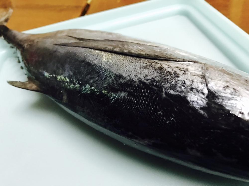 ลาบปลาโอดำ