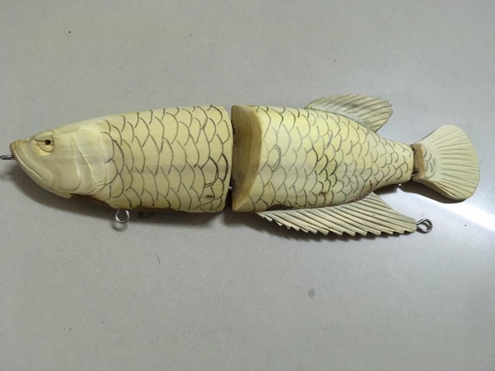 ปลามังกร 1