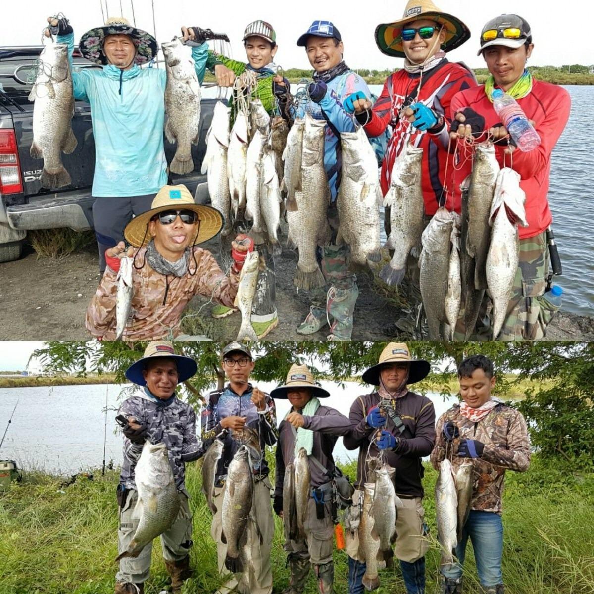 บ่อน้องบิว#75 บ่อ A B อาทิตย์ 10 กันยายน 2560 เพิ่มปลาลงไปอีก ค่าคันเท่าเดิม