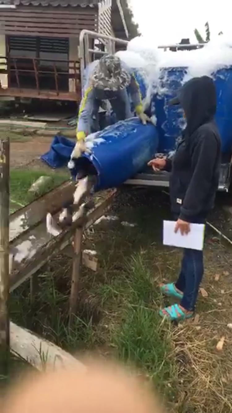 ปลาใหม่ 1000 โล บ่อตกปลากระพงและสนามกีฬาชนไก่ลาดหลุมแก้ว