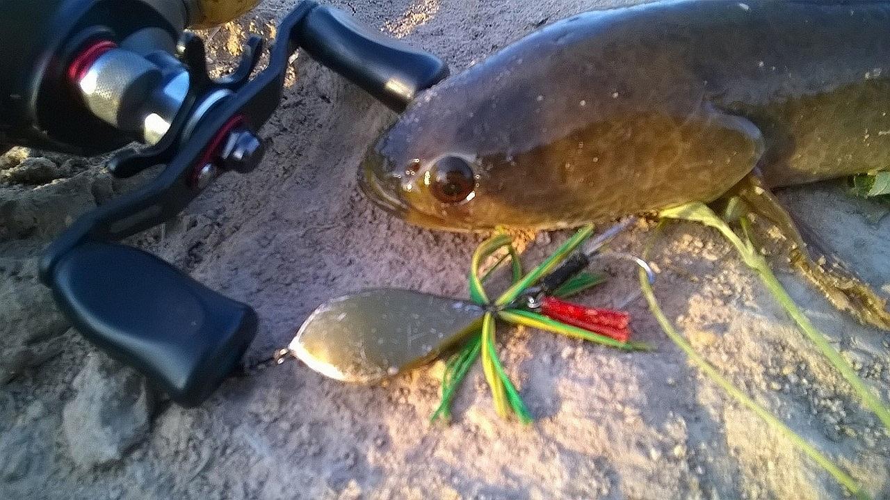 ~ '•'~ ....Tum ปลาเล็ก เรื่องตบเด็กขอให้บอก.... ~'•'~