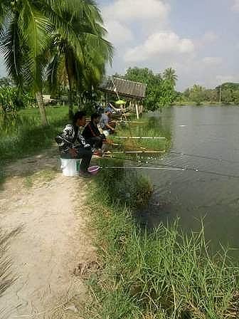 สนุกหันษา แบบบ้านๆ ชิงหลิว ณ.บ่อตกปลาสวนป่าฟิชชิ่่ง สูงเนิน