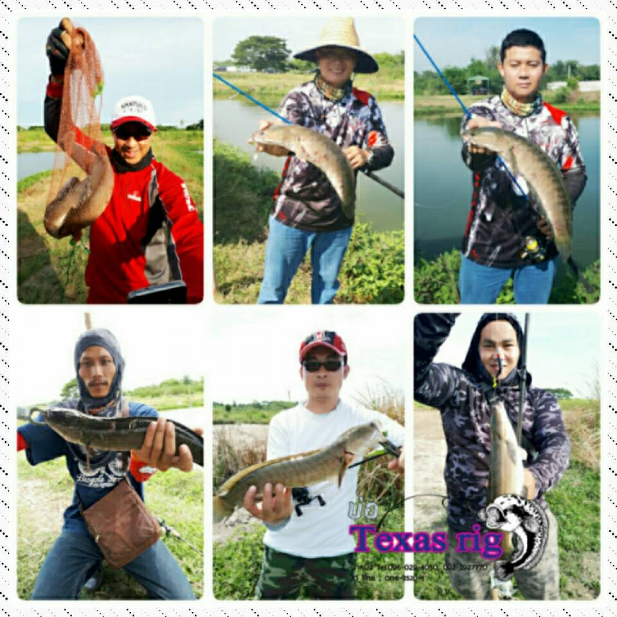Texas rigบ่อตกปลาช่อน นครปฐม