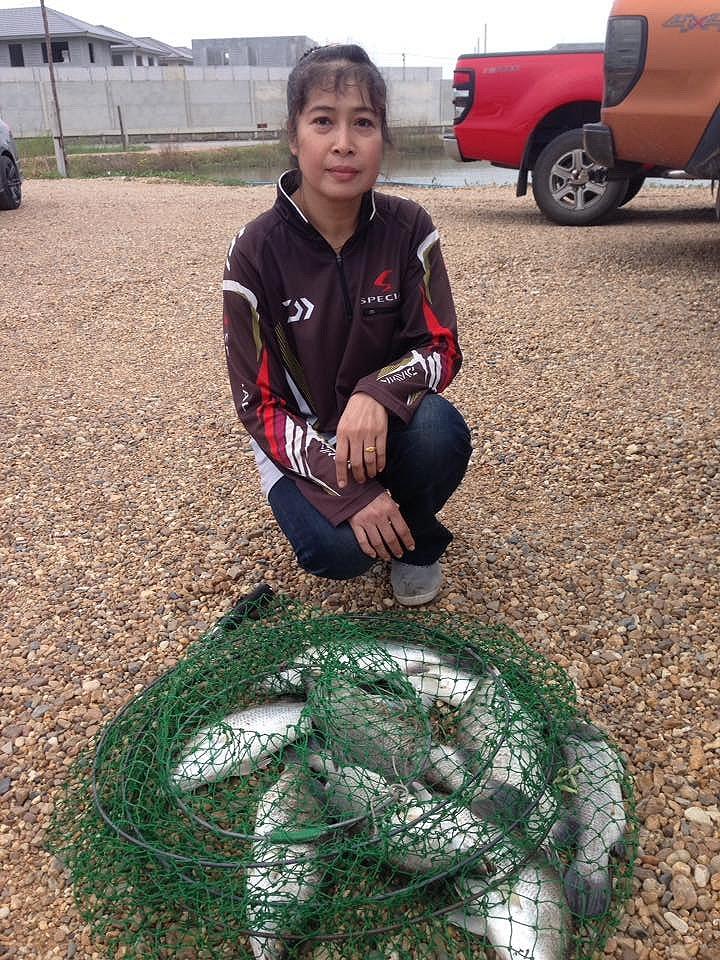 บ่อตกปลากระพงสายเเข็งนครปฐมลงปลาเพิ่มอีก 400 ตัว
