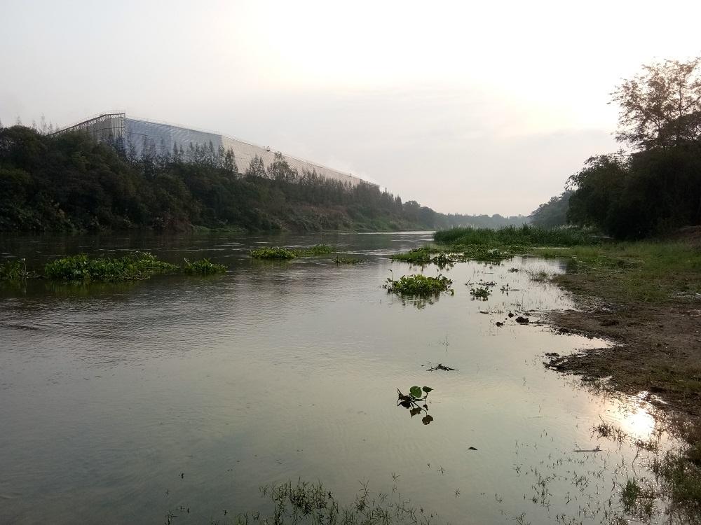 ช่อนแม่น้ำแม่กลองไซร์สวยๆๆๆๆๆ