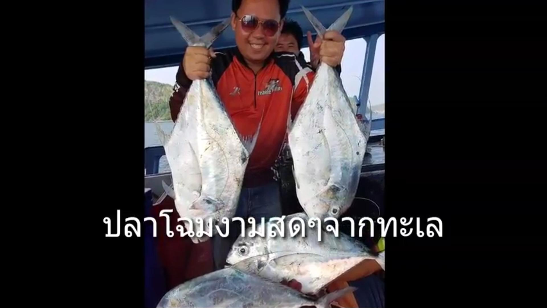 ตกเอง ทำกินเองนักเลงพอ หัวปลาโฉมงามนึ่งซิอิ้ว