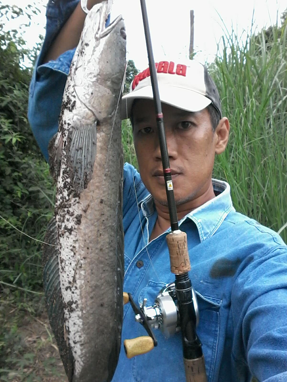 ห้าสายพันธุ์นักล่าท่าจีน