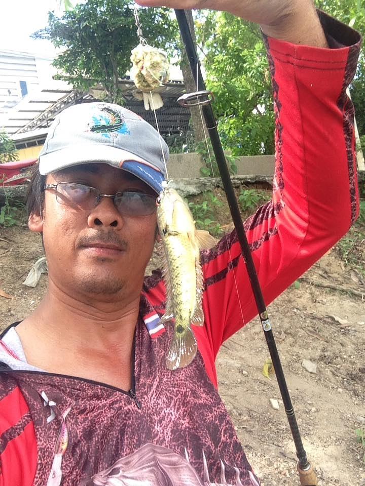 มาหาปลาเค็ม