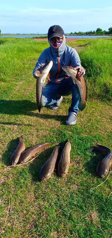 ขอเรียนเชิญ เข้าร่วมการแข่งขันตกปลาช่อน ด้วยเหยื่อปลอม ชิงเงินรางวัลรวม 1 แสนบาท