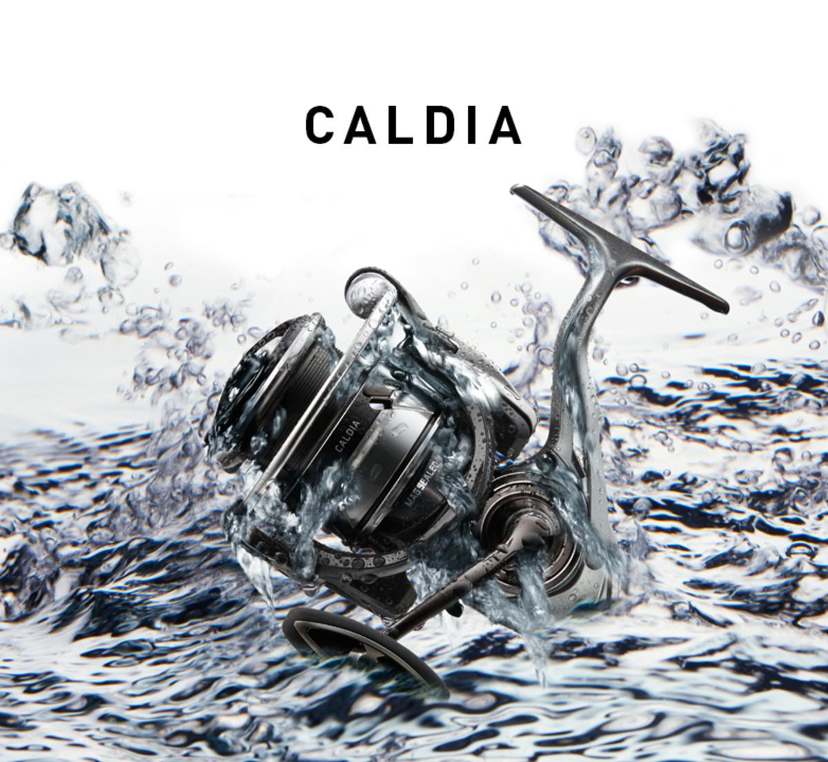 DAIWA CALDIA LT 2018 เบอร์ 3000
