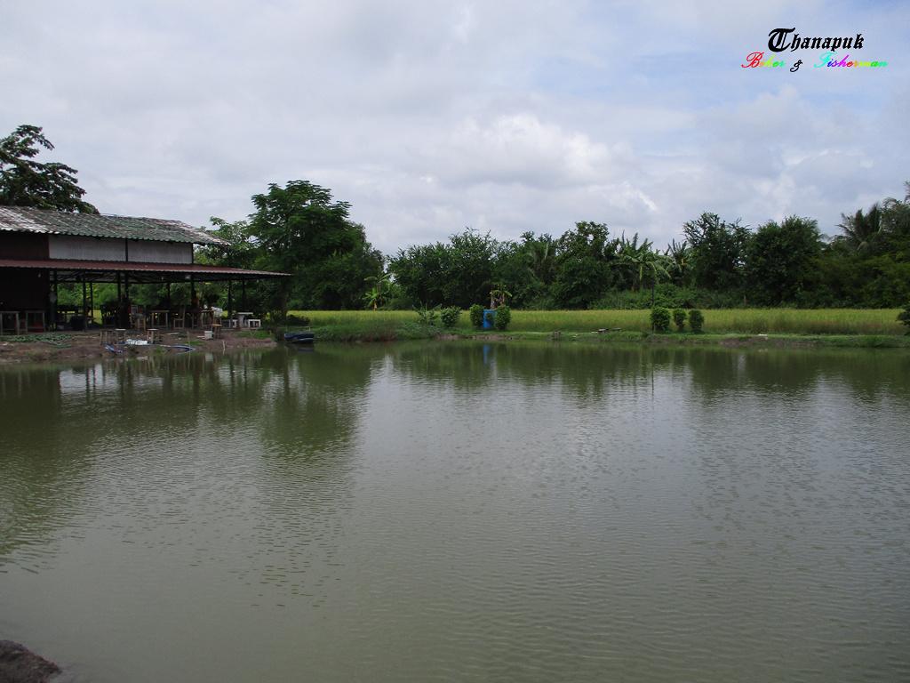จ่องทุ่นเพลิน ๆ ในวันฝนพลำ ๆ