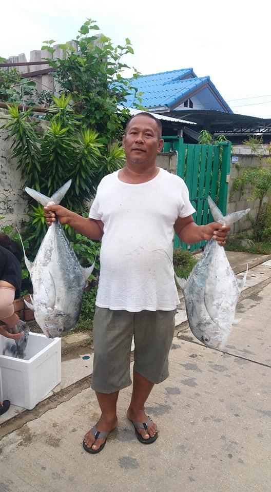 ในวันที่ลังไม่พอใส่ปลา