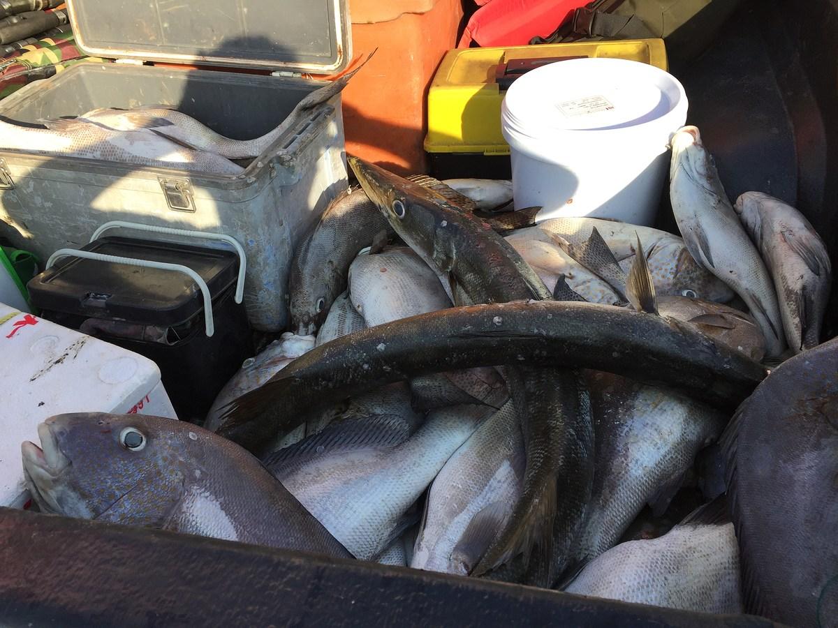 ตกปลากับไต๋เอส
