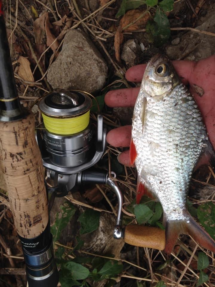 งานปลาเล็ก