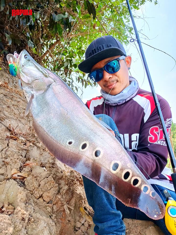 ปลากรายจิบ RAPALA DT 6